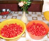 Cseresznyebefőtt - Lehet forró vízbe tenni a cseresznyét!