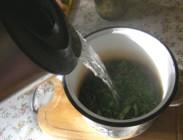Csalán-menta tea - Forrázd le a leveleket!