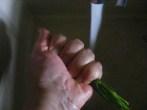 Karalábéleves - Mosd meg a petrezselyemzöldet!