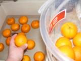 Narancslekvár - A mosott narancsot tedd vissza a vödörbe!