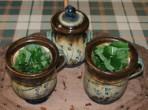 Citromfű-tea - Az összevagdosott citromfű a bögre fűtartójában.