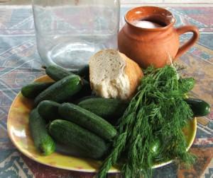 Kovászos uborka - Hozzávalók